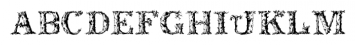 DeadWoodRustic Regular Font LOWERCASE