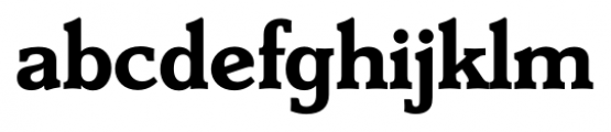 Derringer Serial Bold Font LOWERCASE