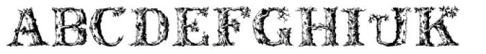 Dead Wood Rustic Font UPPERCASE
