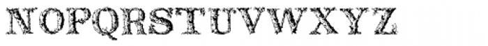 Dead Wood Rustic Font LOWERCASE