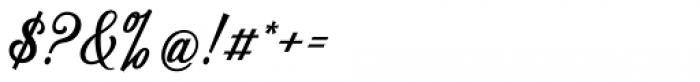 Delighter Script Regular Font OTHER CHARS