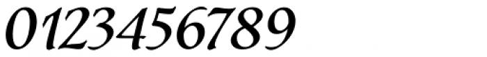 Dez Petranian Italic Font OTHER CHARS