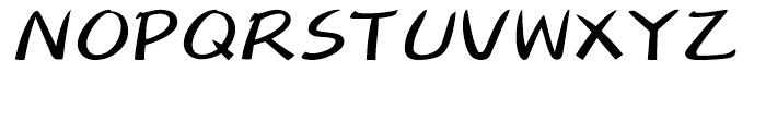 DF Fuun Japanese W 7 Font UPPERCASE