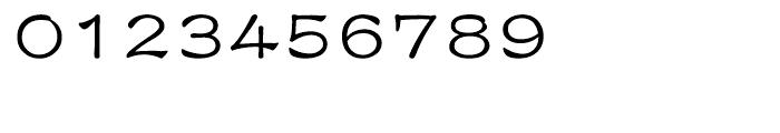 DF Li Shu Traditional Chinese HK-W 5 Font OTHER CHARS