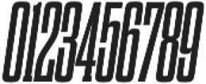 Dharma Slab C Bold Italic otf (700) Font OTHER CHARS