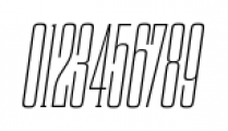 Dharma Slab C Thin Italic Font OTHER CHARS