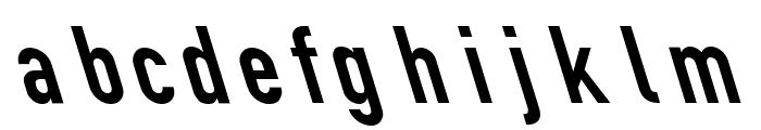 Din Kursivschrift Eng Leftalic Font LOWERCASE