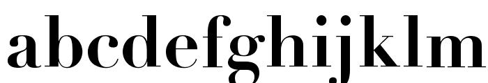 Didot Bold Font LOWERCASE