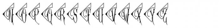 Diamant Monogram Solid (250 Impressions) Font UPPERCASE