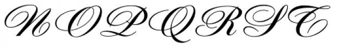 Diane Script Font UPPERCASE