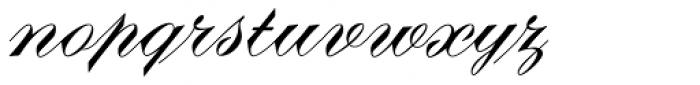 Diane Script Font LOWERCASE