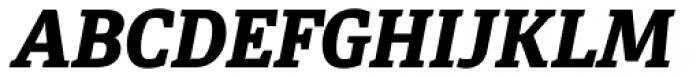 Diaria Pro Extra Bold Italic Font UPPERCASE
