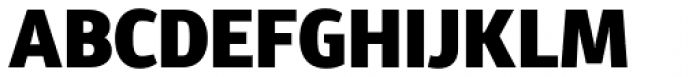 Diaria Sans Pro Black Font UPPERCASE