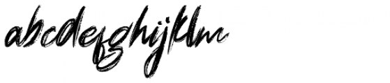 Dignity Rough Font LOWERCASE