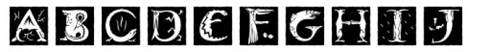 Dinitials Negative Font UPPERCASE