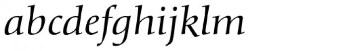 Diotima Classic Pro Italic Font LOWERCASE