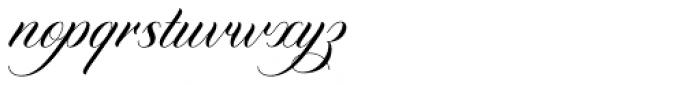 Diploma Script Basic Font LOWERCASE