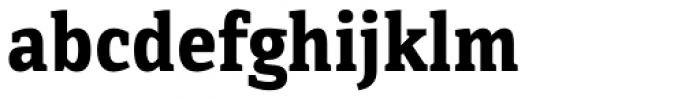 Directa Serif Bold Font LOWERCASE