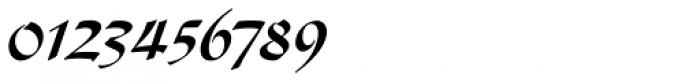 Diskus LT Std Bold Font OTHER CHARS