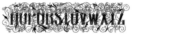 Display Of Character Illuminated BOLD Font UPPERCASE