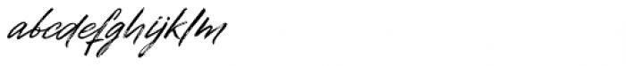 Disruptor's Script  Font LOWERCASE
