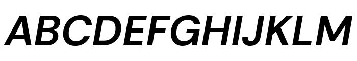 DM Sans Bold Italic Font UPPERCASE