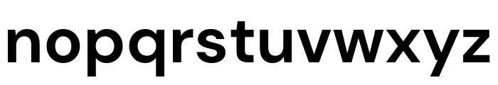 DM Sans Bold Font LOWERCASE