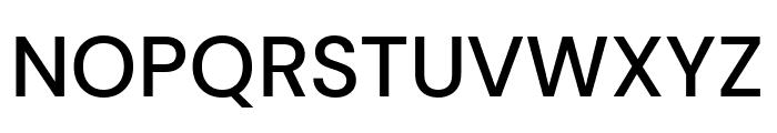 DM Sans Medium Font UPPERCASE