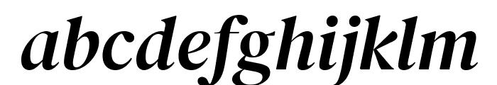 DM Serif Display Italic Font LOWERCASE