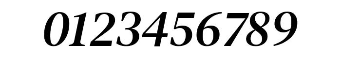 DM Serif Text Italic Font OTHER CHARS