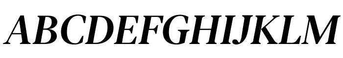 DM Serif Text Italic Font UPPERCASE
