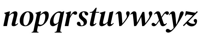 DM Serif Text Italic Font LOWERCASE