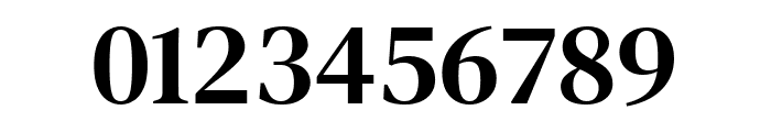 DM Serif Text Regular Font OTHER CHARS
