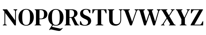 DM Serif Text Regular Font UPPERCASE