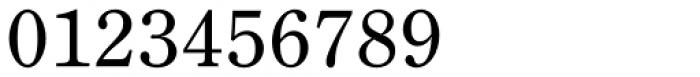 DMT Shuei Mincho Pr6 Medium Font OTHER CHARS