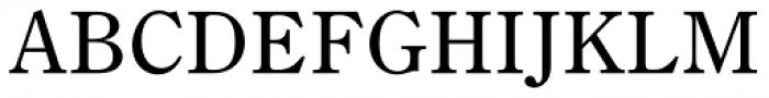 DMT Shuei Mincho Pr6 Medium Font UPPERCASE
