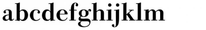 DMT Shuei Shogo Mincho Std Heavy Font LOWERCASE