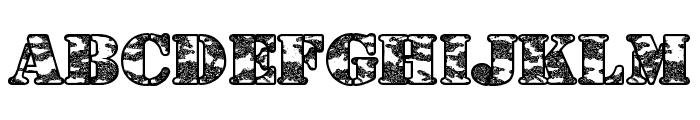 Dolen Taith Font LOWERCASE