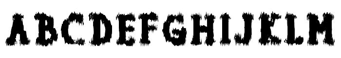 Dolor de Muelas Font UPPERCASE