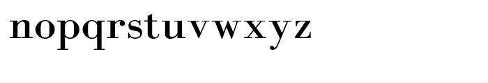 Domino Font LOWERCASE