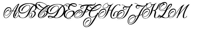 Donna Bodoni A Font UPPERCASE