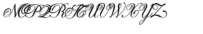 Donna Bodoni Script A Font UPPERCASE