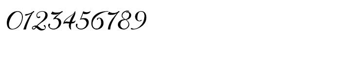 Donna Bodoni Script B Font OTHER CHARS