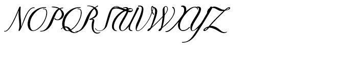 Donna Bodoni Script B Font UPPERCASE