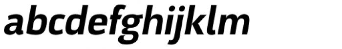 Docu Bold Oblique Font LOWERCASE