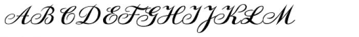 DonJulio Font UPPERCASE