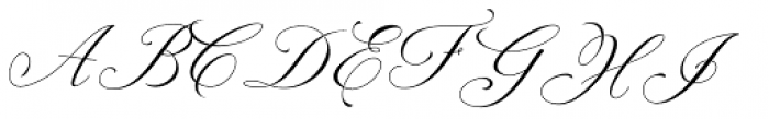 Dongatta Story Regular Font UPPERCASE