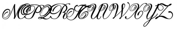 Donna Bodoni Aa Script Font UPPERCASE
