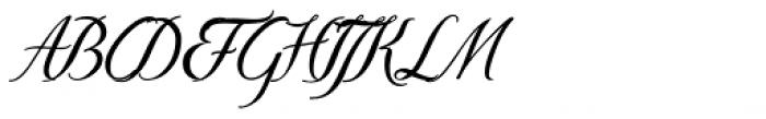 Donna Bodoni Be Script Font UPPERCASE