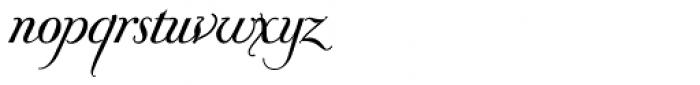 Donna Bodoni Be Script Font LOWERCASE